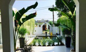 Những nhà hàng, quán ăn ngon rẻ ở Cô Tô: Giá cả & địa chỉ